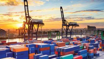 Auto tariffs, Brexit  - 2019 risks, WTO says