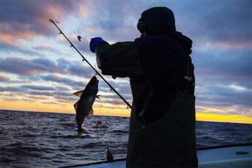 Azərbaycanda balıq ovuna görə ödənişin qiymətləri müəyyənləşdirilib - [color=red]SİYAHI[/color]