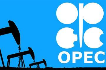 OPEC: Azərbaycanda neft hasilatı artıb