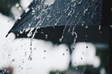 Дождливая погода продолжится