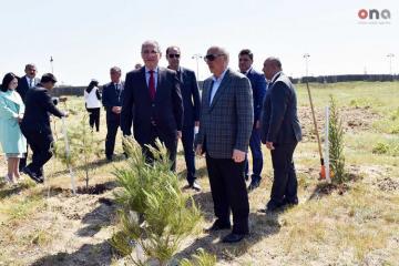 Nazir jurnalistlərlə birlikdə Sumqayıtda ağac əkib - [color=red]FOTOSESSİYA[/color]
