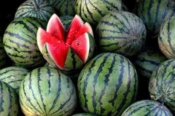 В Мингячевире 4 человека отравились арбузом
