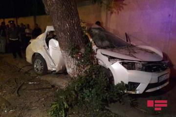 Lənkəranda avtomobil ağaca çırpılıb, ölən və yaralananlar var