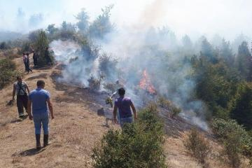 Fire breaks out in Hirkan National Park