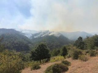MENR: Area around Hirkan National Park protected from fire