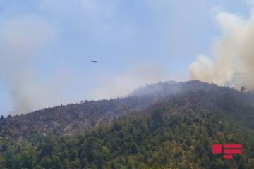 Fire breaks out in mountainous area in Azerbaijan's Aghsu region, helicopters involved