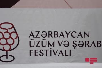 Azerbaijan Grape and Wine Festival held in Shamakhi with support of Heydar Aliyev Foundation