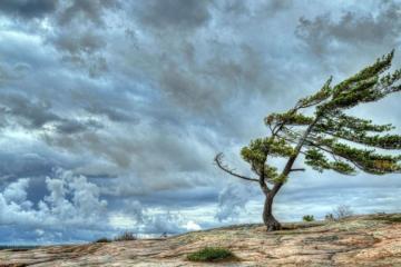 XƏBƏRDARLIQ: Güclü külək əsəcək, bəzi yerlərdə yağış, qar yağacaq