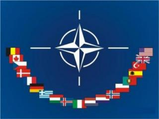 NATO allies adopt joint summit statement