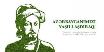 Завтра на территории Азербайджана будет посажено 650 тысяч деревьев