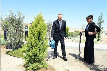 President Ilham Aliyev and first lady Mehriban Aliyeva attended tree-planting campaign in Shamakhi district