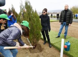 Президент Ильхам Алиев и первая леди Мехрибан Алиева приняли участие в акции по посадке деревьев в Шамахы