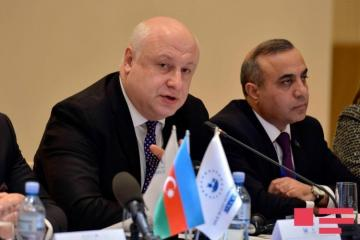 "Tsereteli: ""Processes in Azerbaijan are encouraging"""