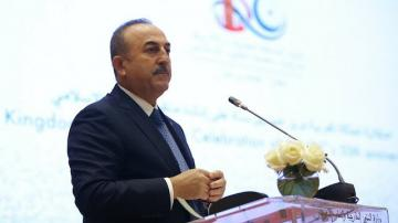"Mevlut Cavusoglu: ""Senate Resolution is nothing more than a political show"""