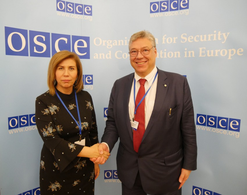 Azerbaijan, OSCE PA discuss prospects for expanding bilateral cooperation