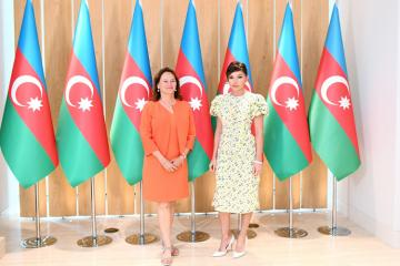 Mehriban Aliyeva meets with French Ambassador for the Arctic and Antarctic Poles