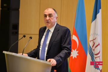 Azerbaijani FM: Activities of foreign companies in occupied territories are under our control