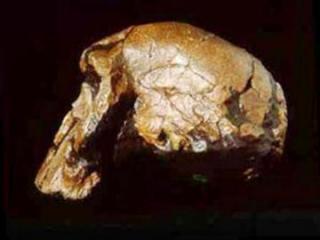 """Bu təsdiqlənsə, deməli """"Homo Sapiens"""" Avropada Afrikadan 160 min il əvvəl olub"""