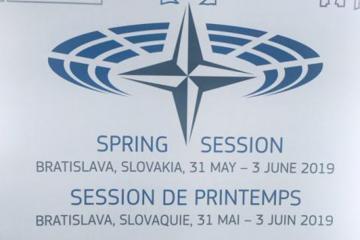 Делегация Азербайджана участвует в весенней сессии ПА НАТО