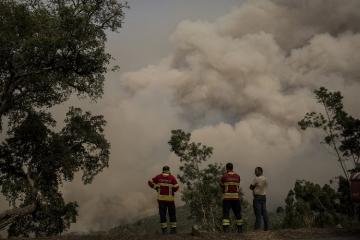 В Португалии разбился небольшой самолёт, есть жертвы