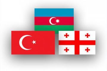 Состоится трехсторонняя встреча министров обороны Азербайджана, Турции и Грузии