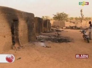 Mali massacre victims included 24 children: PM