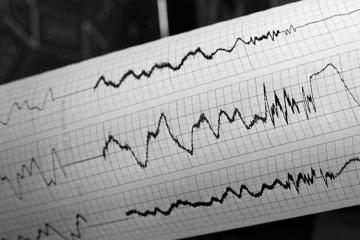 У берегов Новой Зеландии произошло землетрясение магнитудой 7,4