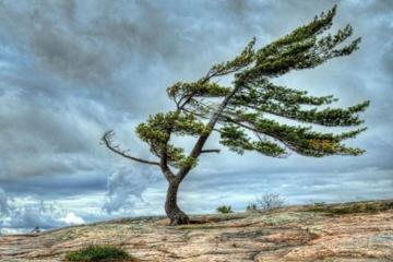 В ряде районов Азербайджана резко ухудшились погодные условия