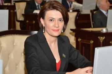 """Deputat: """"Autizmdən əziyyət çəkən uşaqlar təhsildən kənarda qalıb"""""""