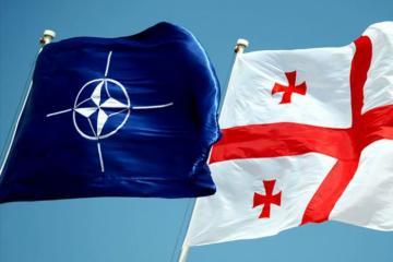 Gürcüstanda NATO təlimləri başlayıb