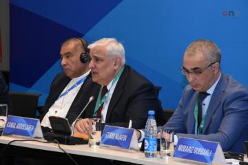 Bakı Forumu çərçivəsində etnik-mədəni müxtəliflik mövzusunda panel keçirilib