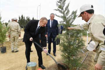 President Ilham Aliyev attended tree-planting campaign - [color=red]UPDATED[/color]