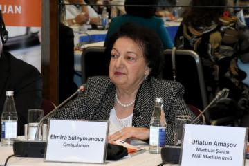 В Азербайджане для жертв насилия будут созданы региональные приюты