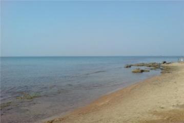 """SOCAR BP və """"Uzbeknefteqaz""""la birgə Aral dənizində geoloji-kəşfiyyat işləri aparacaq"""