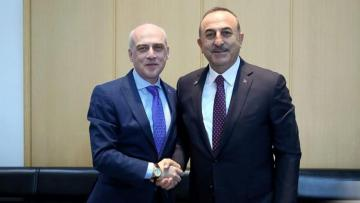 Gürcüstan və Türkiyə xarici işlər nazirləri görüşüb