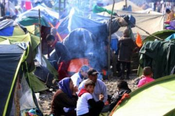Yunanıstana 4 ayda 40 min miqrant gəlib