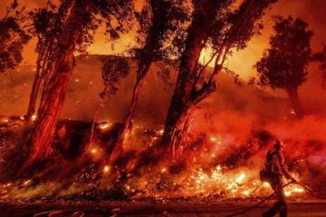 Avstraliyada meşə yanğınlarında 3 nəfər ölüb