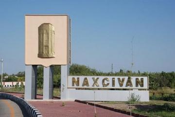 В Нахчыване будет создан Центр искусственного оплодотворения