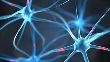 Ученые назвали новую причину болезни Паркинсона