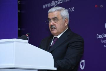 """Rovnaq Abdullayev: """"Over 2,000 hectares of territory being on SOCAR's balance reclaimed"""""""