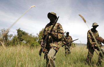 Россия бесплатно поставила оружие Габону