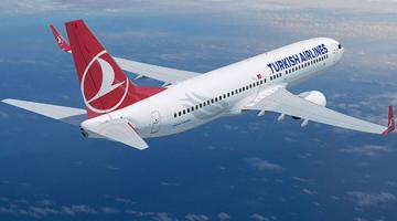 Летевший в Стамбул самолет вернулся в Москву из-за пьяного пассажира