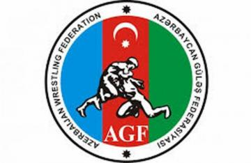 Azerbaijani freestyle wrestlers to contest medals at Intercontinental Cup