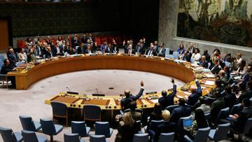 Россия не поддержала заявление СБ ООН по операции Турции в Сирии