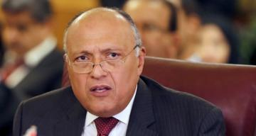 Egypt's foreign minister meets with two senior YPG members