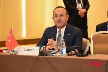 Mevlut Cavusoglu expresses gratitude to Azerbaijan for its support to Peace Spring operation