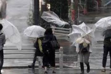 Число жертв тайфуна «Хагибис» в Японии достигло 67