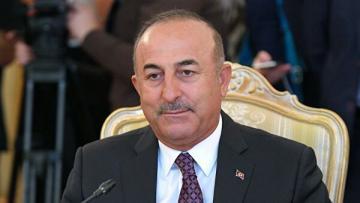 МИД Турции назвал условия вывода войск из Сирии