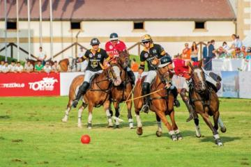 Baku to host Polo World Cup
