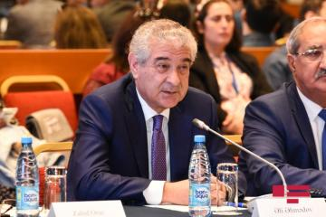 """Ali Ahmadov: """"Interference of the people obtained immigrant status abroad in political processes in Azerbaijan is dangerous"""""""